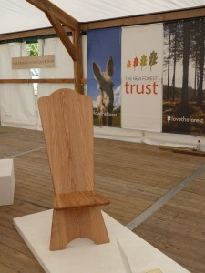 New Forest Show 2014 - 1